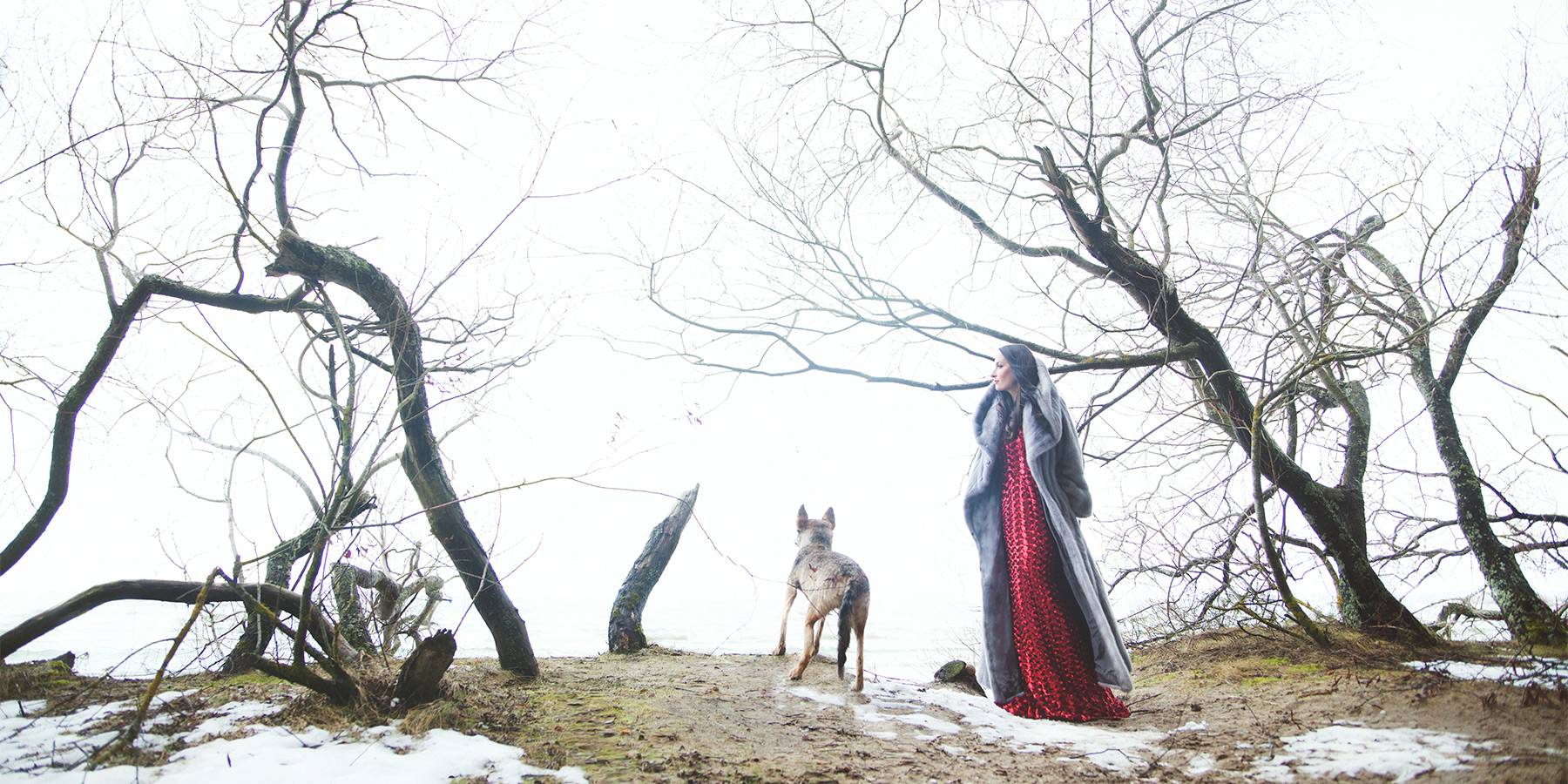 beauty in red dress and a wolf